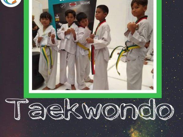 Kejuaraan taekwondo